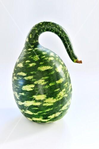 A calabash