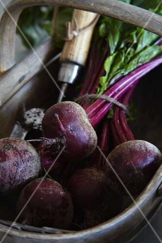 Beetroot in a wooden basket