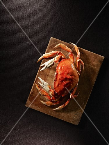 A steamed crab