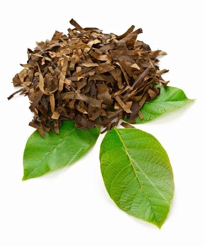 Walnut leaves, dried and chopped on a fresh walnut leaf