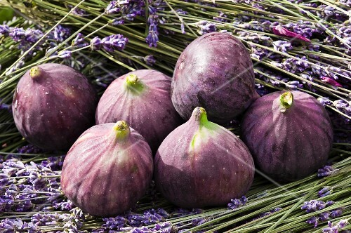 Red figs with lavender