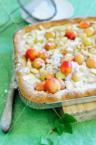 Tray bake gooseberry cake