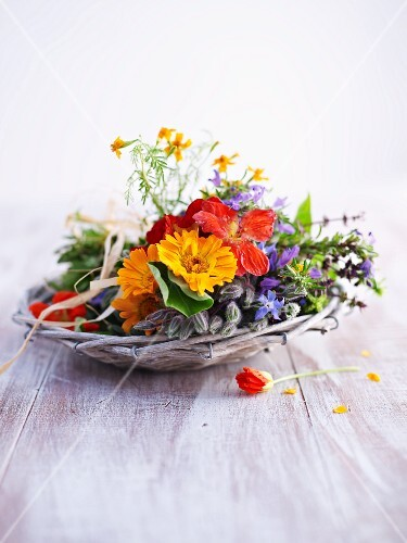 Colourful herb flowers