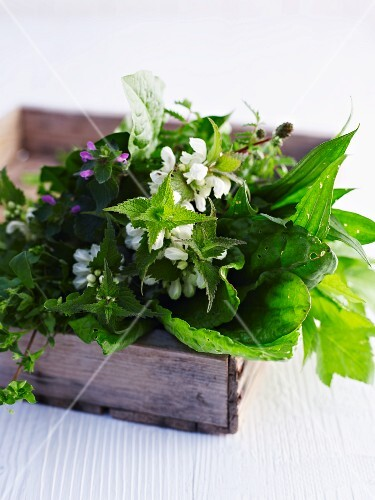 Wild herbs in a wooden crate