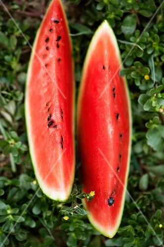 Two wedges of water melon in the grass