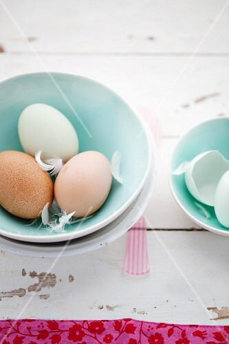Fresh eggs with feathers