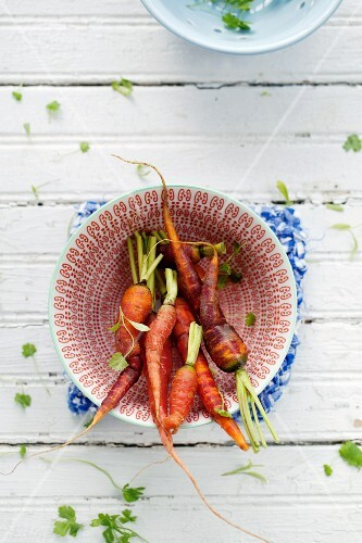 Various type of carrots in a bowl