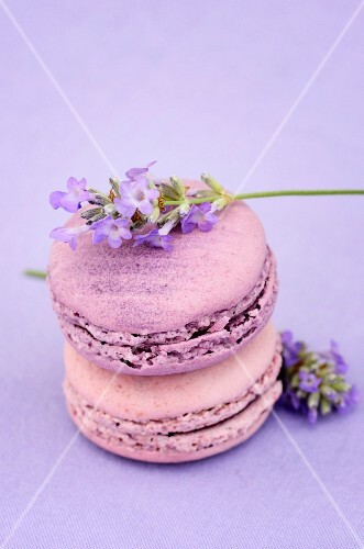Macaroons with lavender flowers