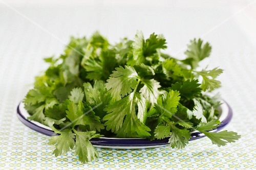 Fresh coriander on a plate