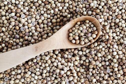 Coriander seeds (full frame)