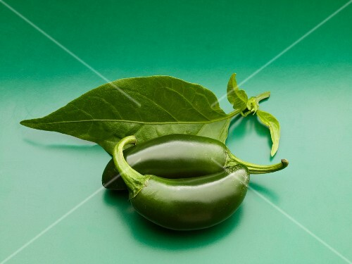 Two jalapeños and a leaf