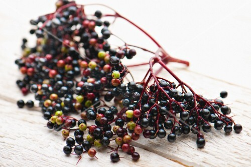 Elderberries on a white surface
