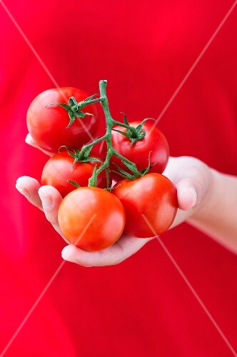 A young woman holding tomatoes