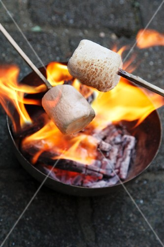 Marshmallows being toasted over a fire