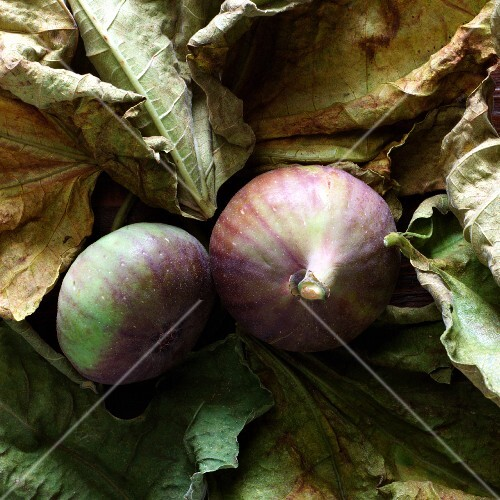 Red figs