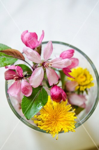 Spring flowers in a glass of water