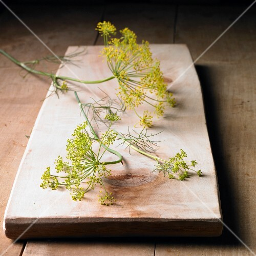 Dill flowers on a wooden board