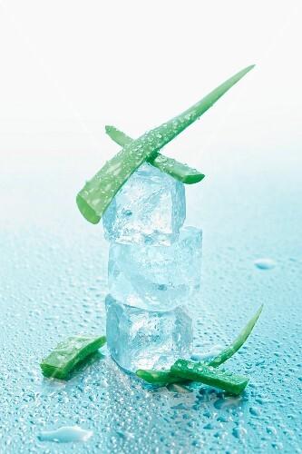 Aloe vera with ice cubes