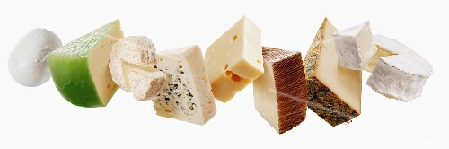 Pieces of different cheeses