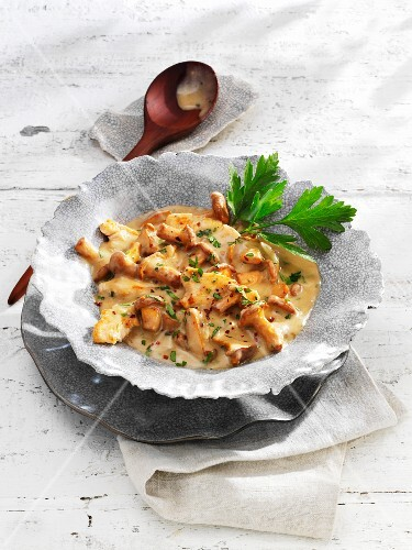 Turkey with chanterelle mushrooms in a creamy sauce
