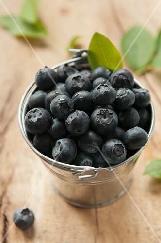 Blueberries in a zinc bucket