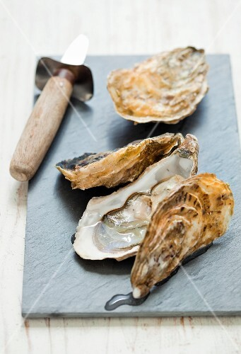 Oysters with an oyster knife