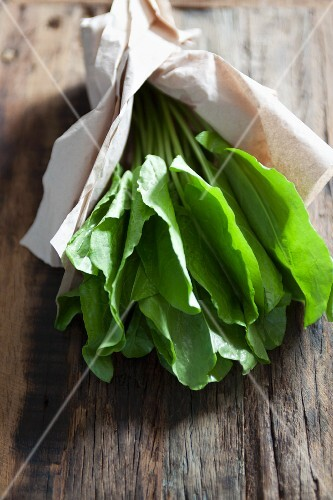 Fresh sorrel wrapped in paper