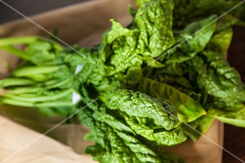 Fresh Bunch of Spinach on a Brown Paper Bag
