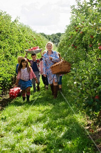 A mother and children in an apple orchard
