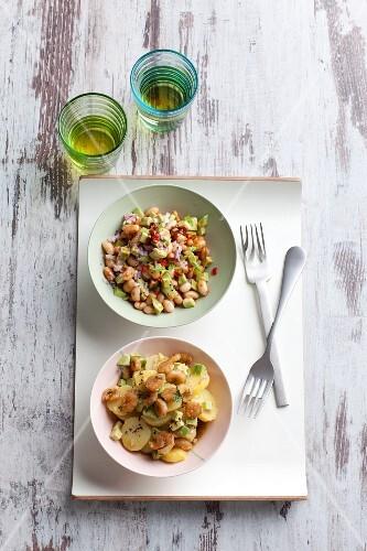 Potato salad and bean salad