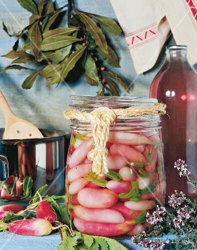 Radishes preserved in vinegar