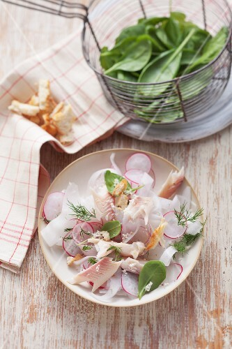 Rettichsalat mit Forelle und Radieschen und Korb mit Spinat im Hintergrund