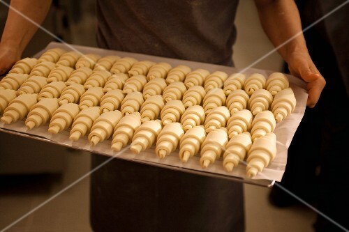 A person holding a baking tray of unbaked croissants