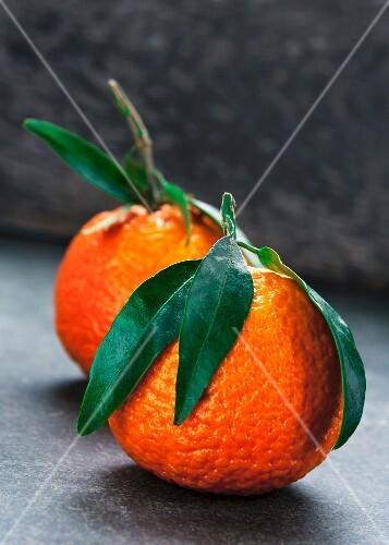 Zwei Clementinen mit Blättern