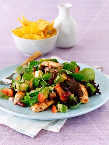 Spicy chicken salad with tortilla chips