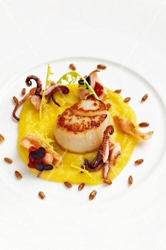 Fried scallops and calamari on olive cream