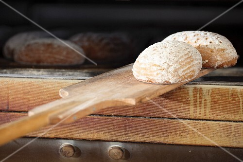 Wheat-rye bread being removed from an oven