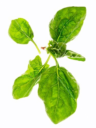 Spinach leaves on a white surface