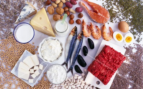 Protein-rich foods (fish, meat, eggs, dairy products, nuts)