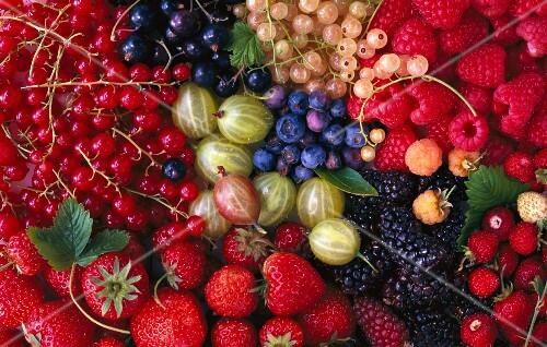 An arrangement of berries (seen from above)