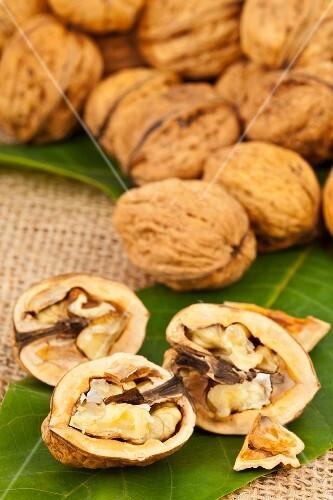 Whole and halved walnuts on a walnut leaf