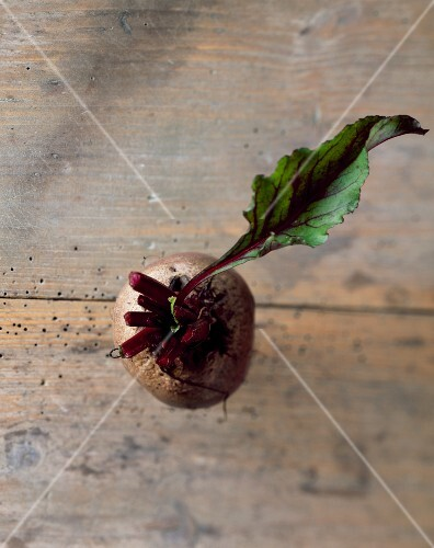 A beetroot with a leaf