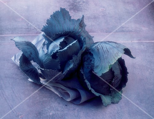 Two red cabbages