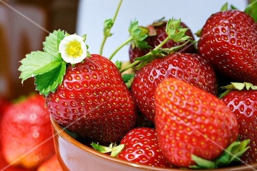 Fresh strawberries with a flower