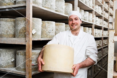 Portrait of smiling cheese maker holding large farmhouse cheddar cheese wheel in cellar