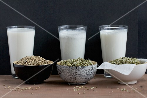Home-made hemp milk with whole seeds and shelled seeds; milk is still being filtered