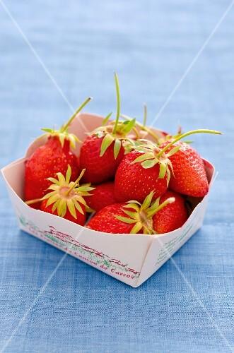 Quart of Fresh Maine Strawberries