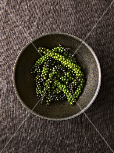 Peppercorns on the vine in a wooden bowl