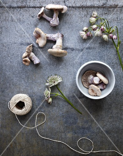 Assorted mushrooms, flowers and kitchen twine