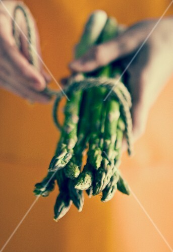 Hands holding a bunch of asparagus